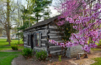 Log cabin in spring